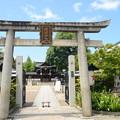 夏空の晴明神社