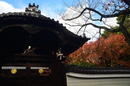 寺門と紅葉