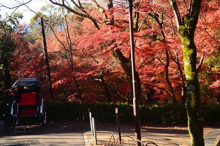 人力車のある紅葉景色