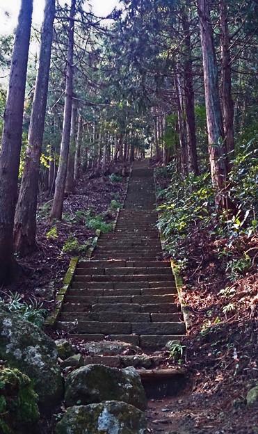 神奈川県厚木市 鐘ケ嶽登山道 石段