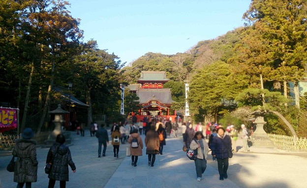 写真: 鶴岡八幡宮 遠距離