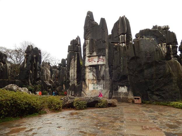 雲南省 世界遺産 石林 #3