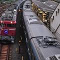 Photos: 代走機関車のカシオペア~2014年