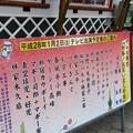 写真: まもなく13時45分からテレビ東京で『新春!お笑い名人寄席』始まりまー...