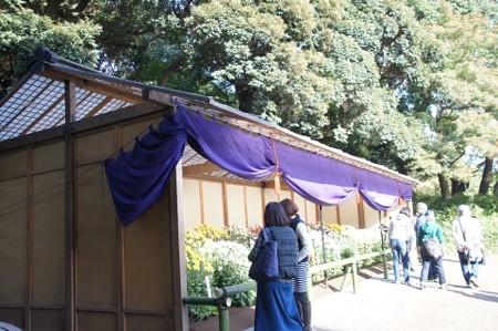 上屋と江戸菊花壇