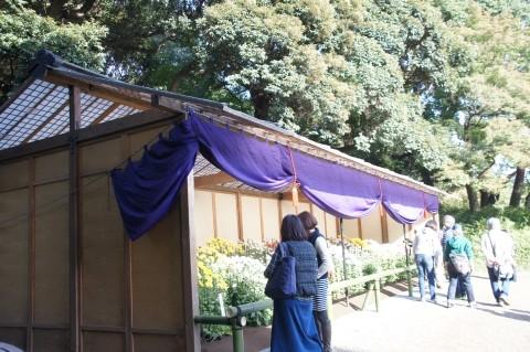 Photos: 上屋と江戸菊花壇