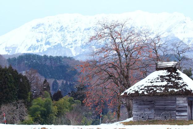 雪小屋と柿の木 -大山南壁を望みて-