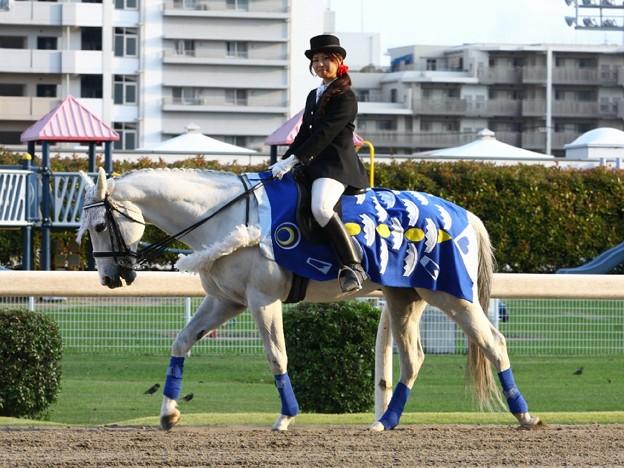 写真: 川崎競馬の誘導馬05月開催 こいのぼり青Ver-120514-04-large