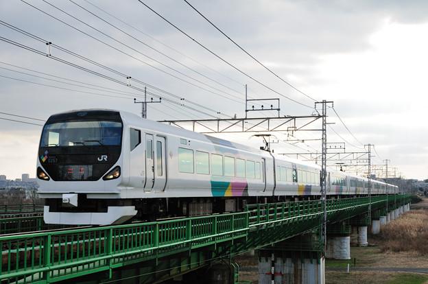 多摩川橋梁を渡るE257系電車