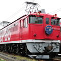 Photos: EF65型電気機関車 はくつる ヘッドマーク