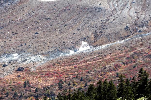 白根山の裾の噴煙