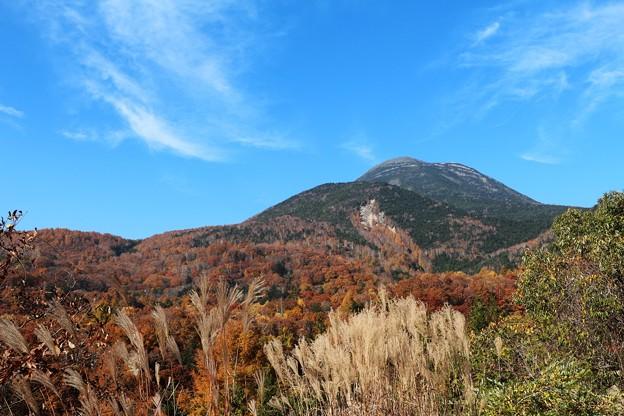 秋の風情蓼科山