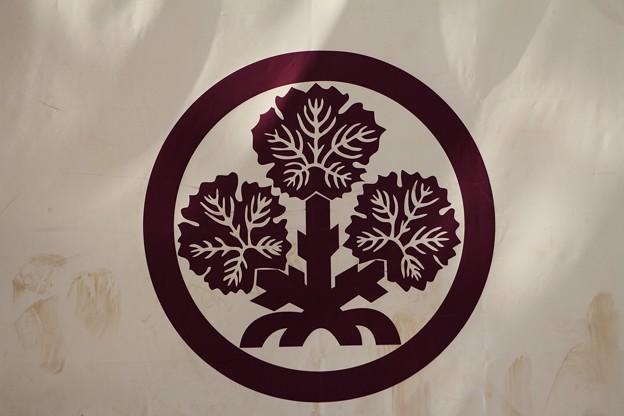 諏訪家の家紋「梶葉紋」