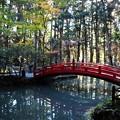 事待池(ことまちいけ)の太鼓橋