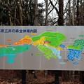 Photos: 三井の森案内図