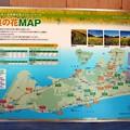 Photos: 田原市菜の花MAP