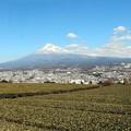 Photos: 「富士のやぶ北茶」