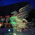 Photos: 氷彫刻