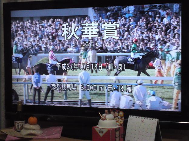 競馬 グリーン チャンネル