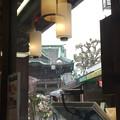 写真: 雨の帝釈天を眺めながら鰻の焼き上がりを待っております(笑)