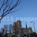Photos: image197