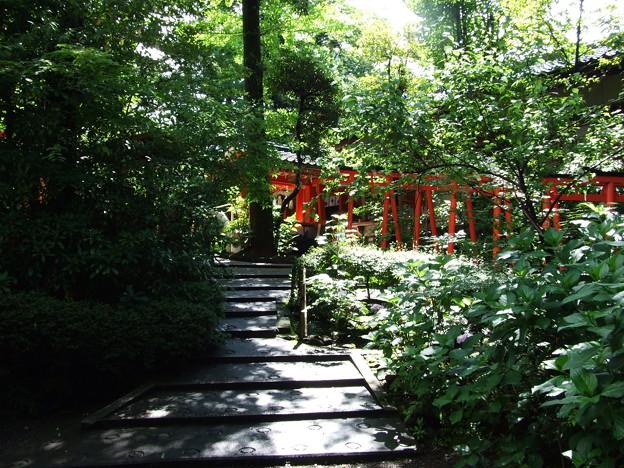 Kanazawa 金澤神社