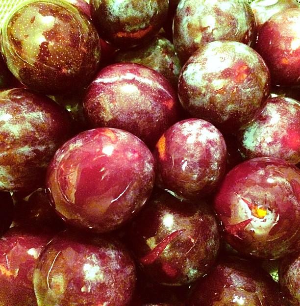 Ripe & Juicy Plums from neighbor tree