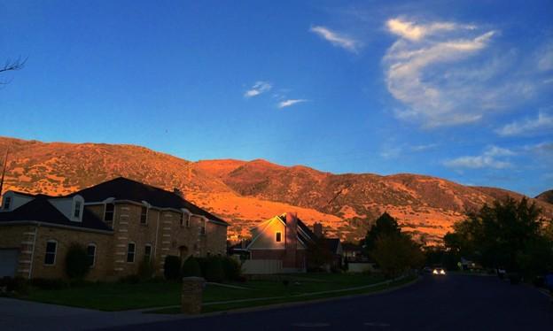 夕陽が当たった裏山♪