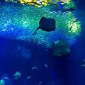 Photos: 海のミュージアム♪