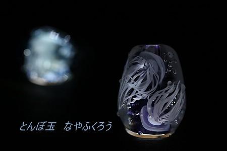 とんぼ玉 H27.10.11 1