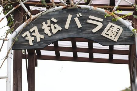 双松バラ園 (そうしょうばらえん)