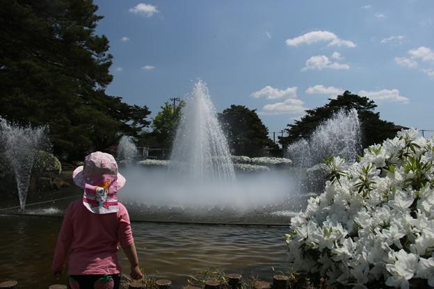 白つつじ公園にて 5月14日 (4)
