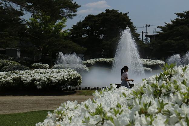 白つつじ公園にて 5月14日 (7)