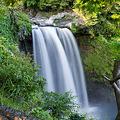 Photos: 音止めの滝 2012.6.6-3