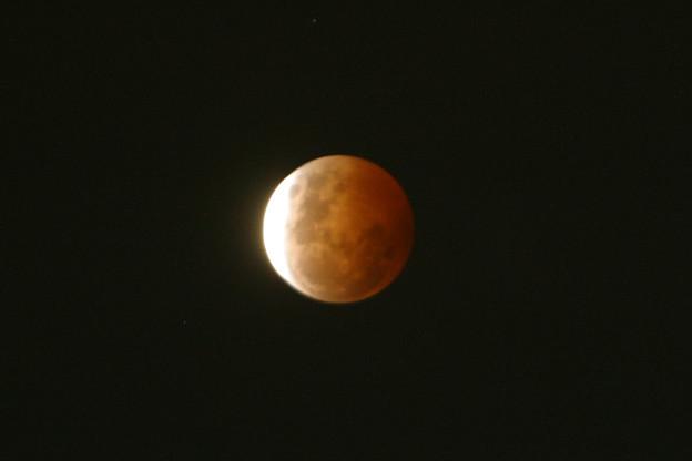 Photos: 皆既月食20141008D