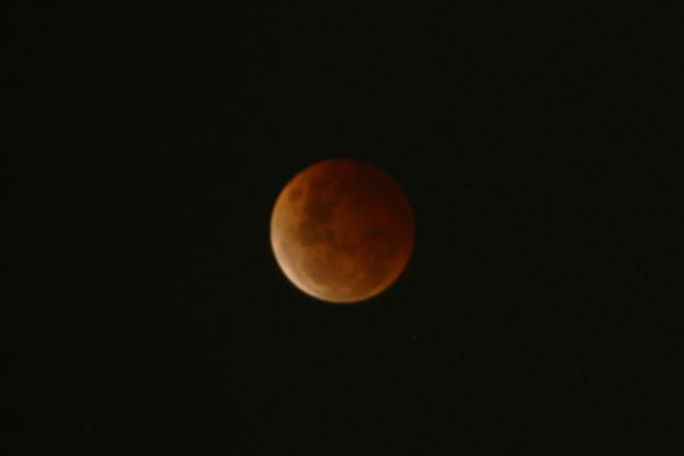 Photos: 皆既月食20141008G