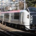 Photos: E259系クラNe009編成 特急成田エクスプレス31号