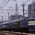 武蔵野貨物線 EF65-501+サロン佐渡8両