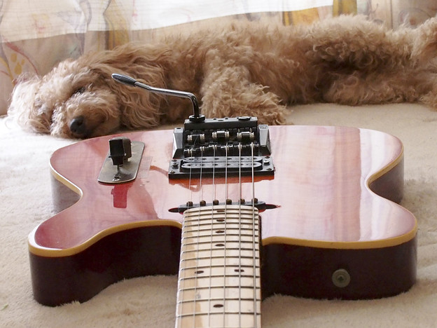 Guitar002 レッドサンバースト テレキャスター