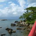佐渡へ(ときわ丸と津神島公園)2014年