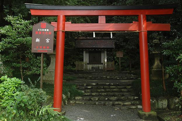 Photos: 鶴岡八幡宮新宮
