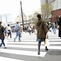 Photos: 11月7日、銀座・数寄屋橋交差点にて
