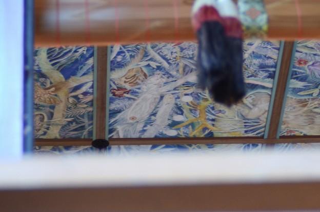11月24日、南沢氷川神社にて(4)