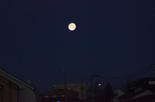 1月25日、未明の空に沈みゆく月