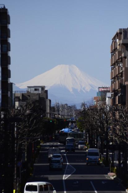 Photos: 3月1日、富士見テラスより