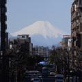 3月1日、富士見テラスより