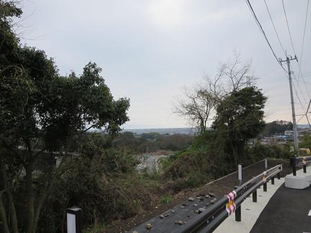高台から駿河湾を望む