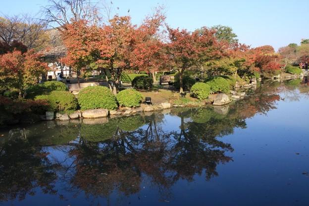 池のほとり