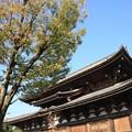 Photos: 東寺金堂