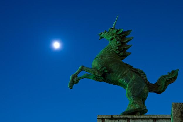 写真: 月に向かって飛ぶ麒麟